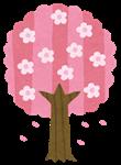 4_桜_150